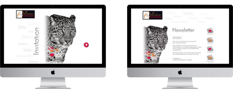 conception visuel e-mailing et newsletter