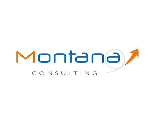 création logotype Montana consulting